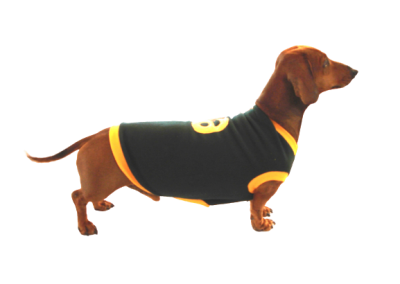 Sporty Dog Jerseys